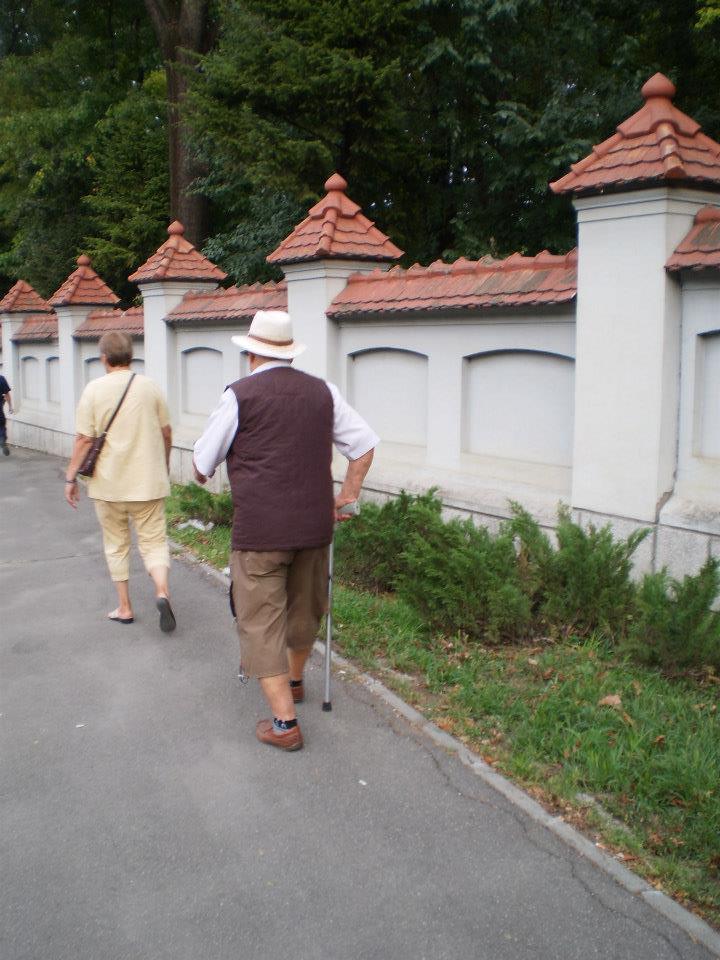 acest domn se plimba zilnic in jurul Palatului Cotroceni . Daca el poate poti si tu trebuie doar sa vrei si sa intelegi