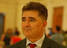 Ioan Ghise senator PNL